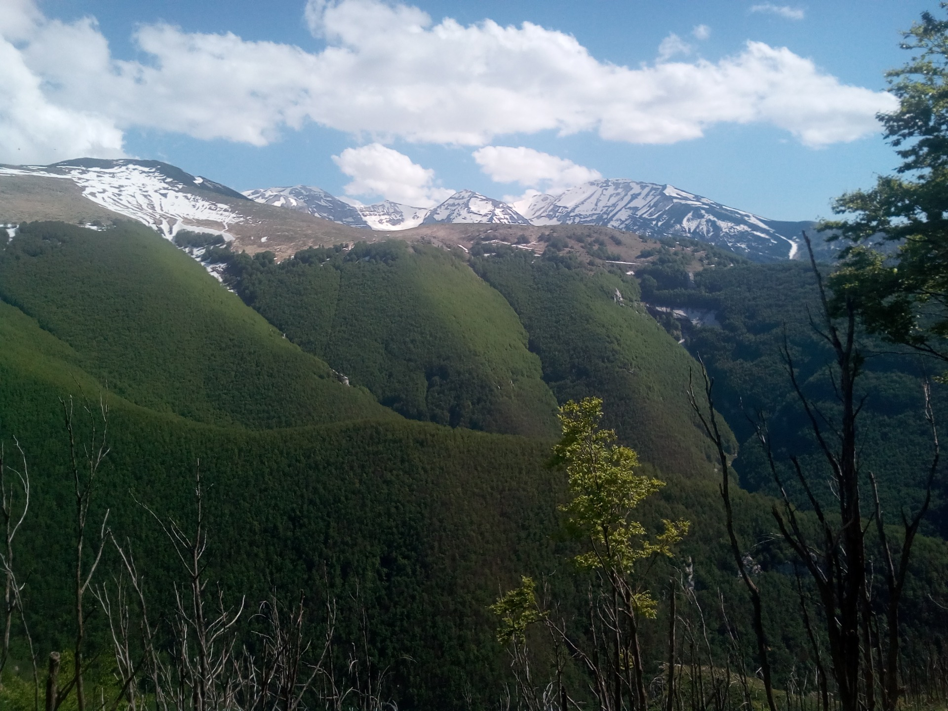 Montagna Majella con boschi verdi e vette innevate