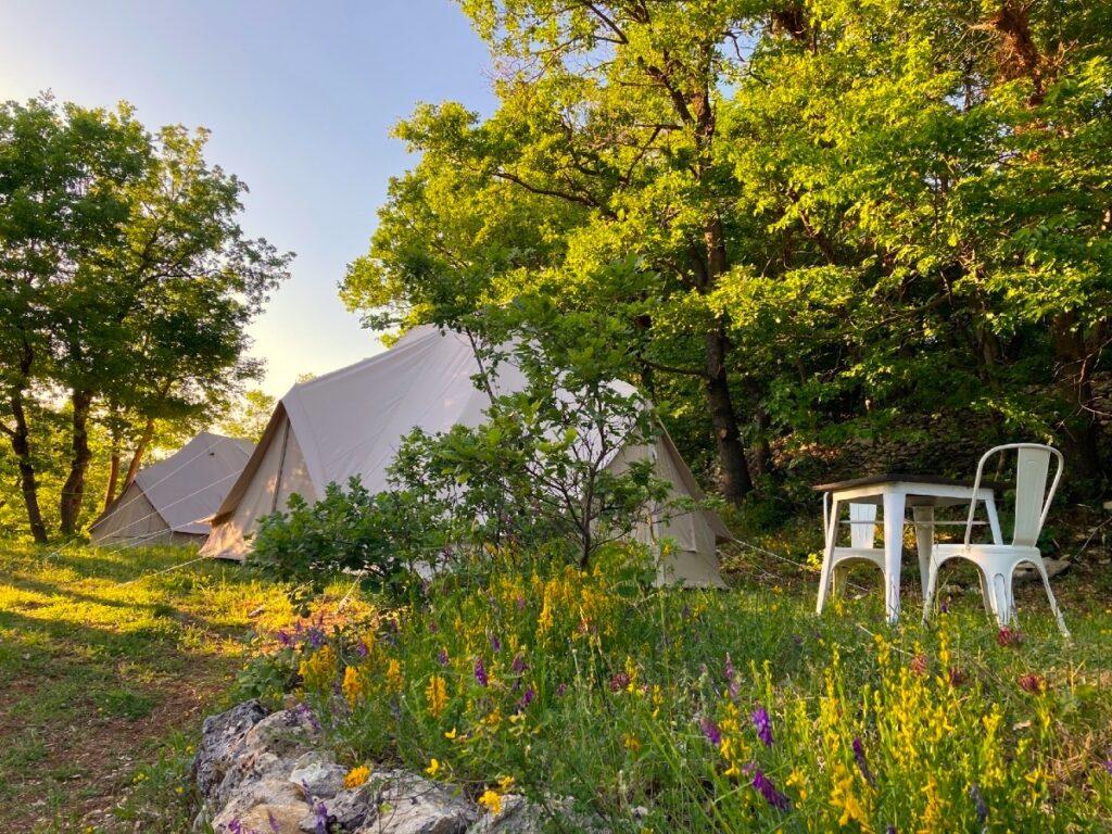 area esterna del glamping nel bosco con fiori tavoli e sedie