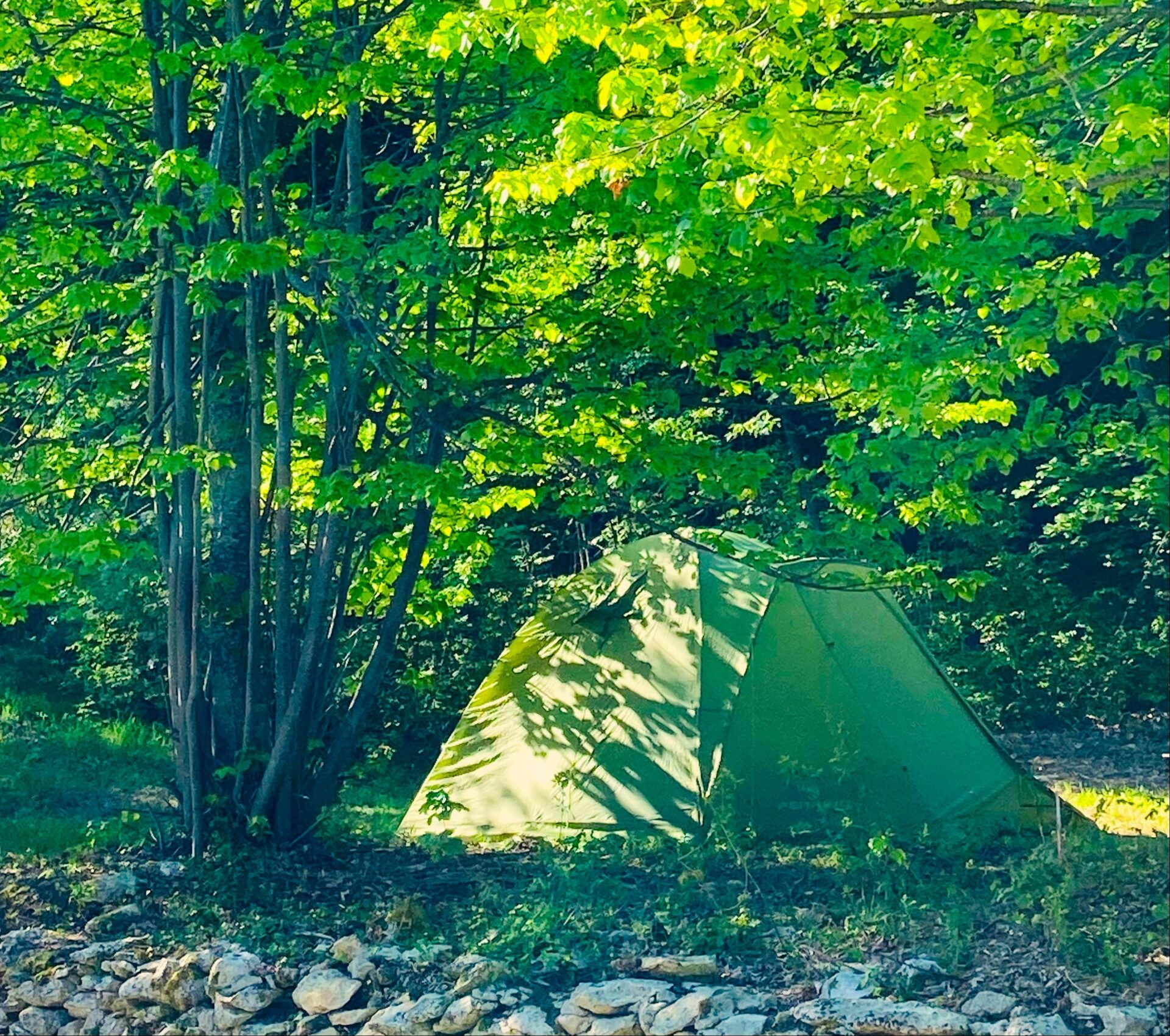 tenda montata nella piazzola del campeggio